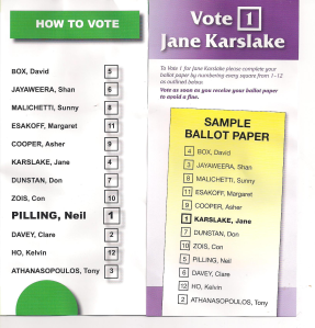 how-to-vote-cards